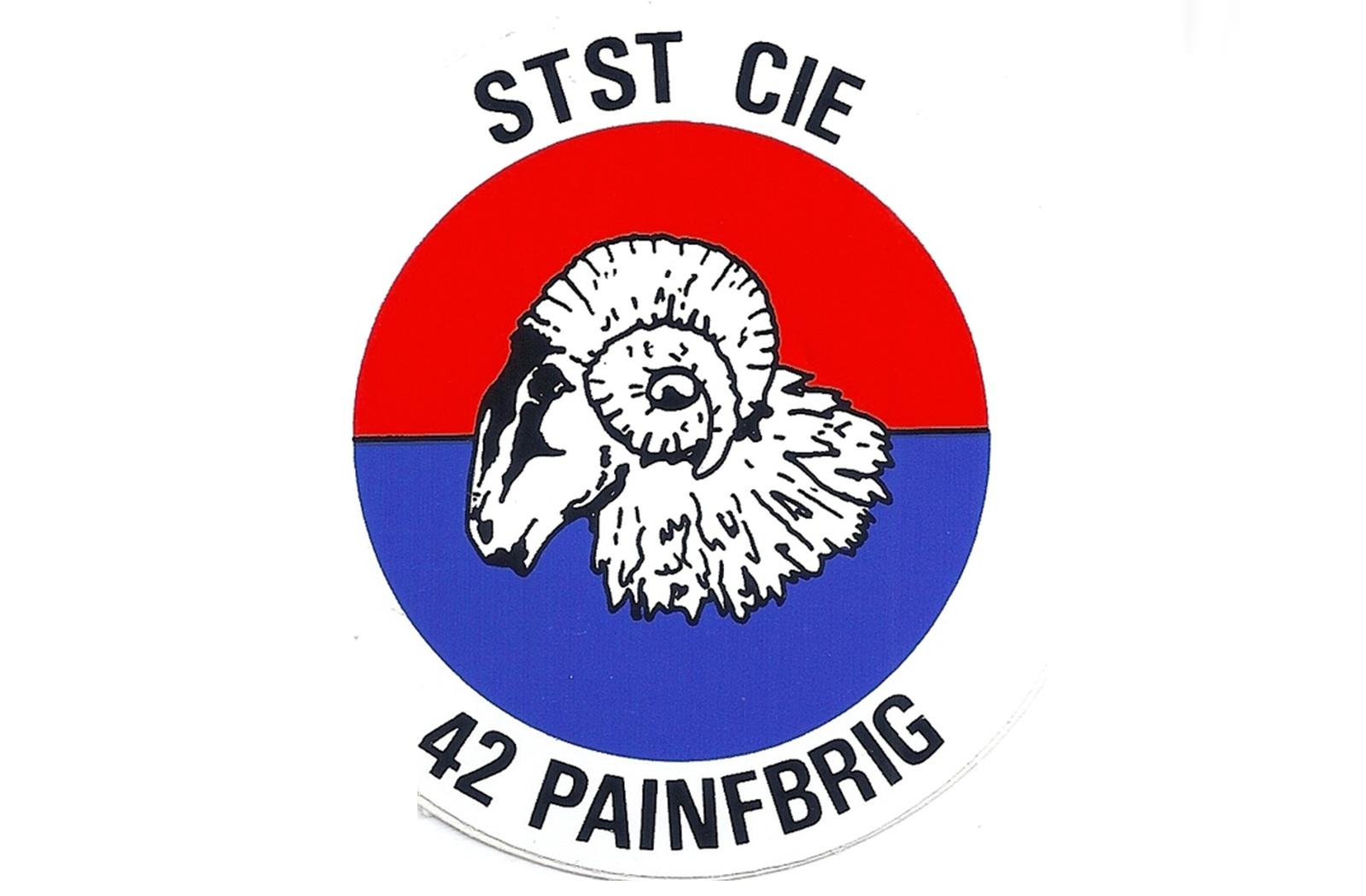 STST-CIE 42 PAINFBRIG